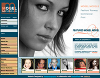 Webphotographix Homepage Design Layout